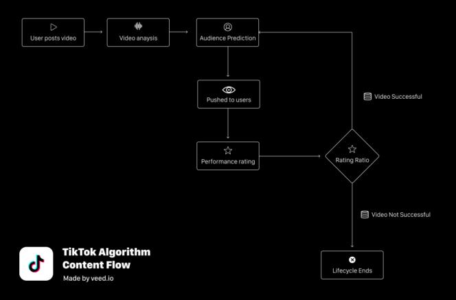 algoritmo_tiktok_contenido